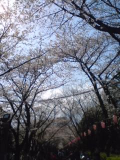 東京都春季水泳競技大会