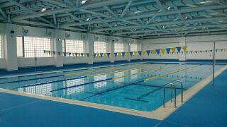 麹町中学校水泳部 成長中